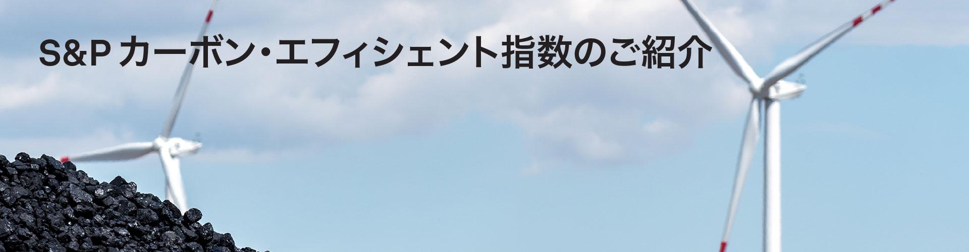 S&P カーボン・エフィシェント指...